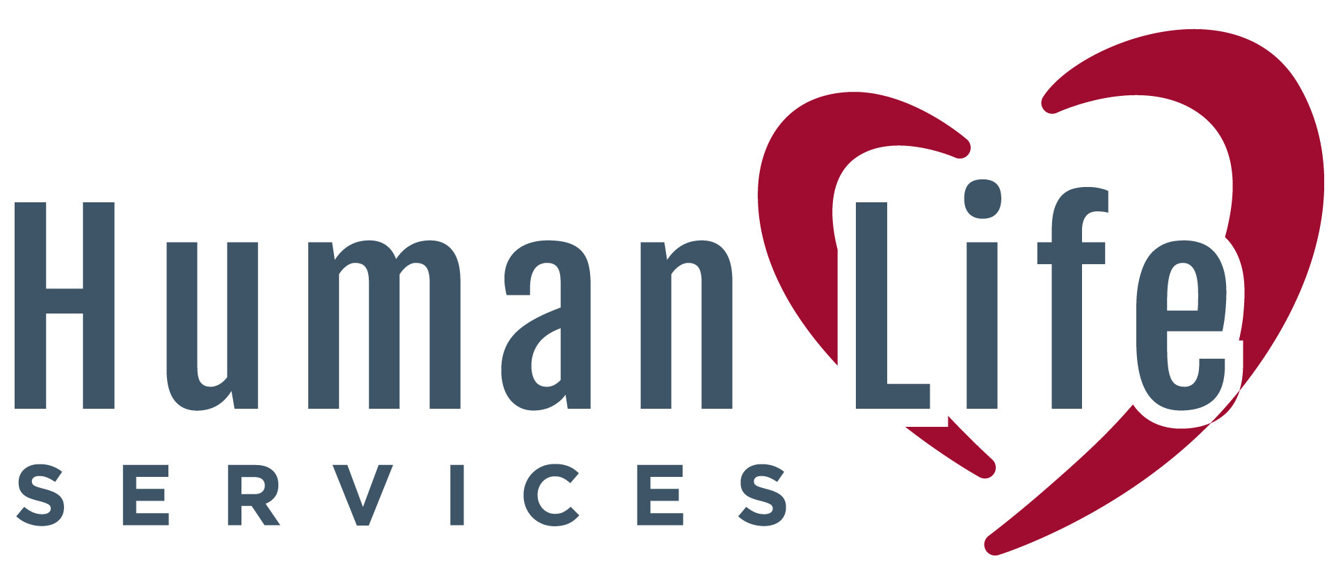 Human Life Services